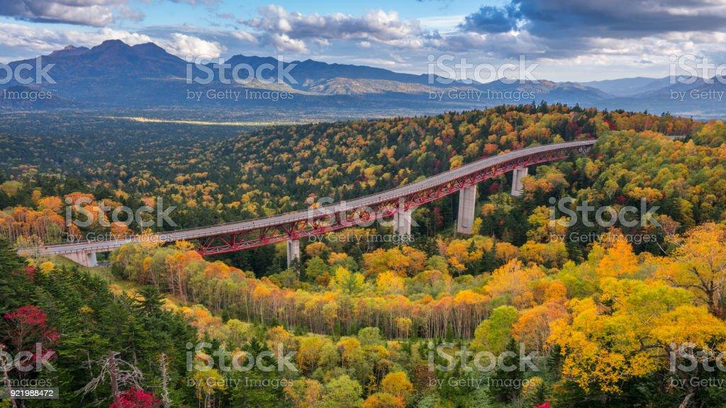 A highway passing through an yellow autumn forest at Mikuni Pass, Hokkaido, Japan royalty-free stock photo