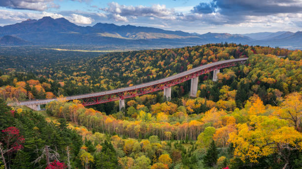 A highway passing through an yellow autumn forest at Mikuni Pass, Hokkaido, Japan stock photo