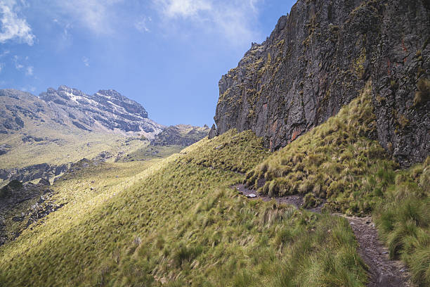 Hike along a mountain trail Hiking along the green grass up the side of the Iztaccihuatl Volcano in Mexico. orizaba stock pictures, royalty-free photos & images