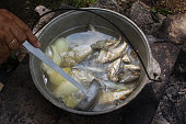 hike. fish soup in a kettle on the fire. tourist still life.