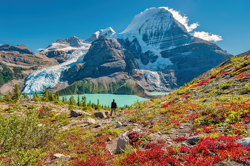Hiker admires view of Mount Robson from above Berg Lake, Mount Robson Provincial Park, British Columbia, Canadian Rockies on a sunny afternoon.
