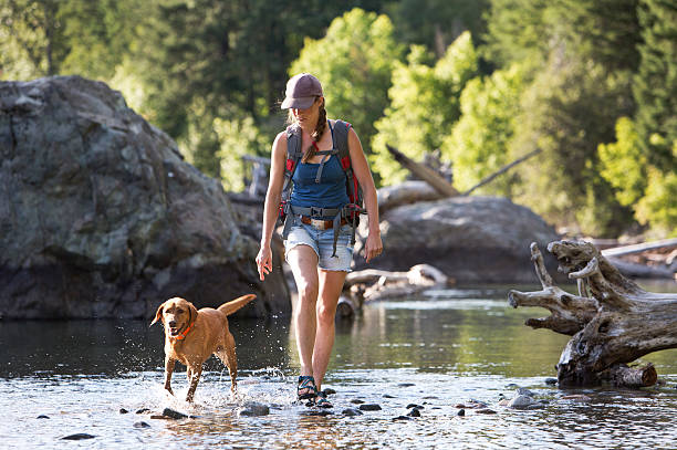 Hiker and Dog Crossing The Shallow Part of a River.