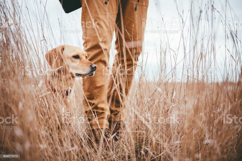 Wanderer und Hund in Grünland - Lizenzfrei Abenteuer Stock-Foto