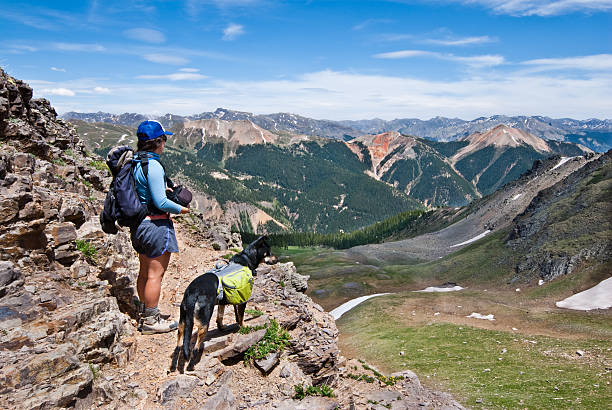 Hiker and Dog Looking at the View A young woman hiker and her companion dog look out over the San Juan Mountains from 12,000' Columbine Lake Pass in the San Juan National Forest near Silverton, Colorado, USA. san juan county colorado stock pictures, royalty-free photos & images