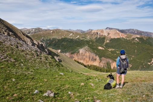 Hiker And Dog Looking At The View Stock Photo - Download Image Now