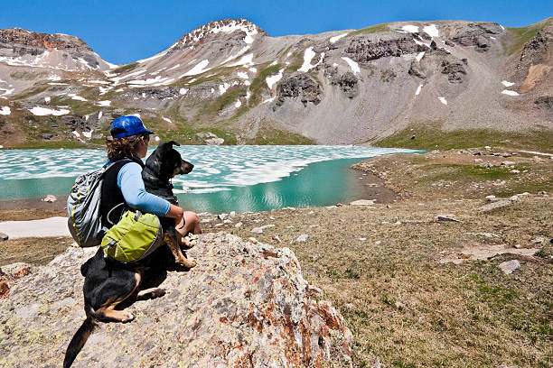 Hiker and Dog Sitting on a Rock at Ice Lake The San Juans in southern Colorado are a high altitude range of mountains that straddle the Continental Divide. This wide-open landscape, at 12,300, is well above timberline. The young woman and her dog were photographed at Upper Ice Lake in the San Juan National Forest near Silverton, Colorado, USA. san juan county colorado stock pictures, royalty-free photos & images