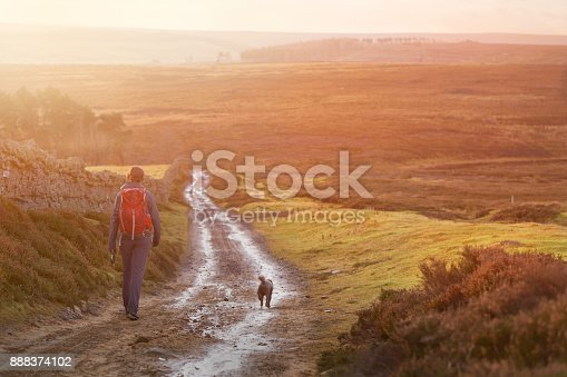 istock A hiker and their dog walking along a wet dirt track at sunset in the English Countryside. Edmondbyres Common. 888374102
