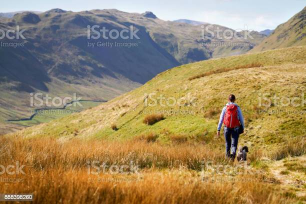 Hiker and their dog walking along low moss gill below the summits of picture id888398260?b=1&k=6&m=888398260&s=612x612&h=hslgd0exfydvzlnblldc0jrb6icrzttcjixle8xx5cs=