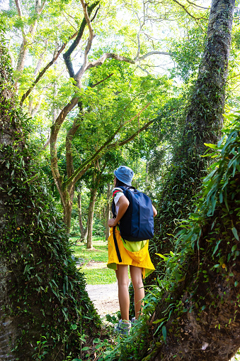 Hiker asian young women walking in national park with backpack. Woman tourist going camping in forest. Travel Concept