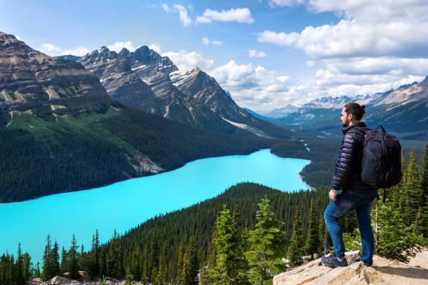 wandelaar op peytomeer in nationaal park banff, alberta, canada - lake louise stockfoto's en -beelden