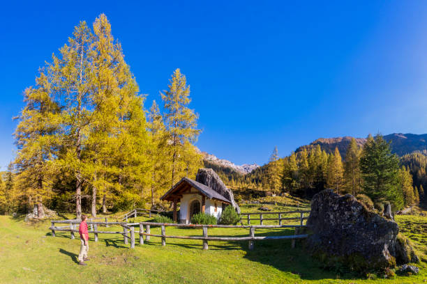 hiker in alps with little chapel in background - forstau in the province of salzburg - pinaceae stock photos and pictures
