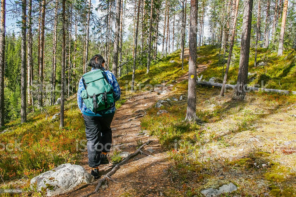 Hiker in forest stock photo