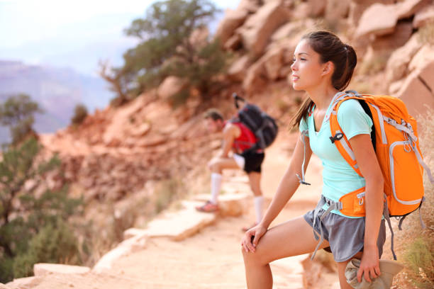 Hiker in Grand Canyon stock photo