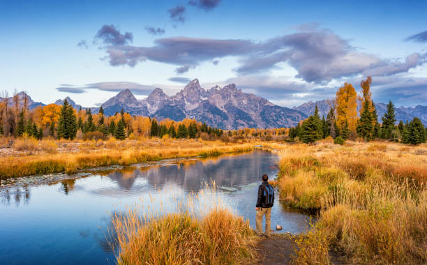 Hiker in Grand Teton National Park USA Stock photograph of hiker looking at view at Schwabacher Landing in Grand Teton National Park, Wyoming, USA, at dawn. rocky mountains north america stock pictures, royalty-free photos & images