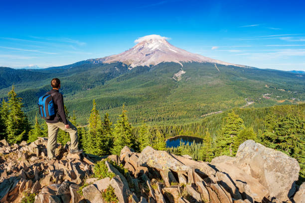 Hiker in Mount Hood National Forest Oregon USA Stock photograph of a hiker looking at view in Mount Hood National Forest Oregon USA on a sunny day. mt hood stock pictures, royalty-free photos & images