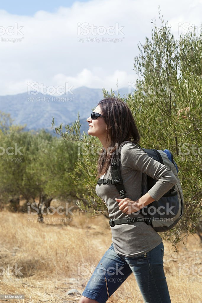 hiker in olive trees stock photo