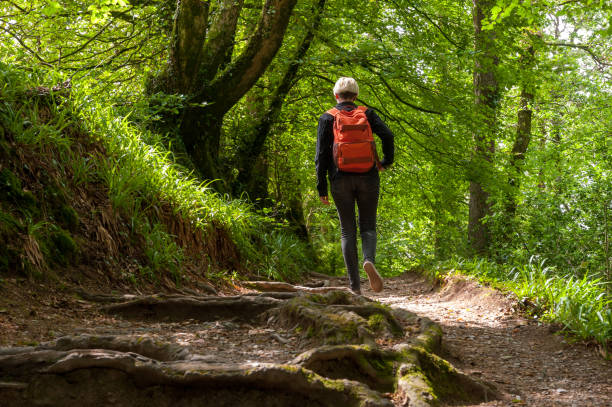 Hiker in the Lydford Gorge Natural Reserve, Devon, UK stock photo