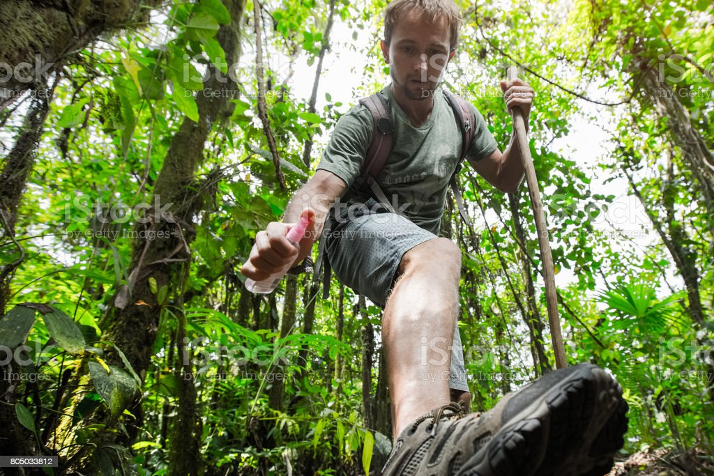 Hiker in the tropical forest stock photo