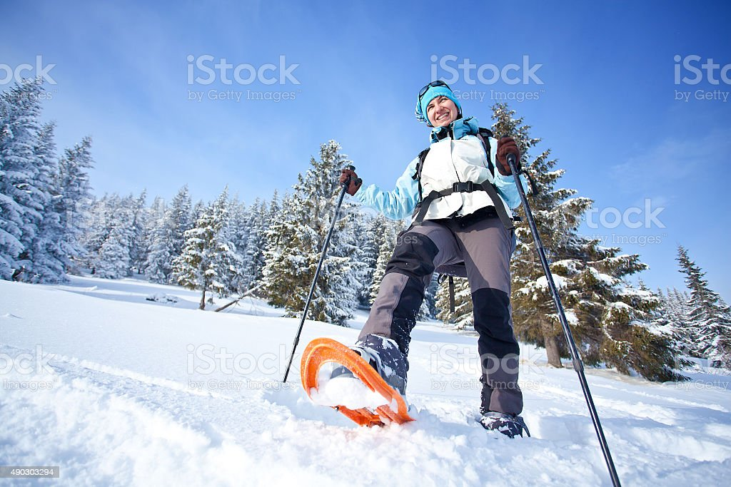Hiker in the winter forest stock photo