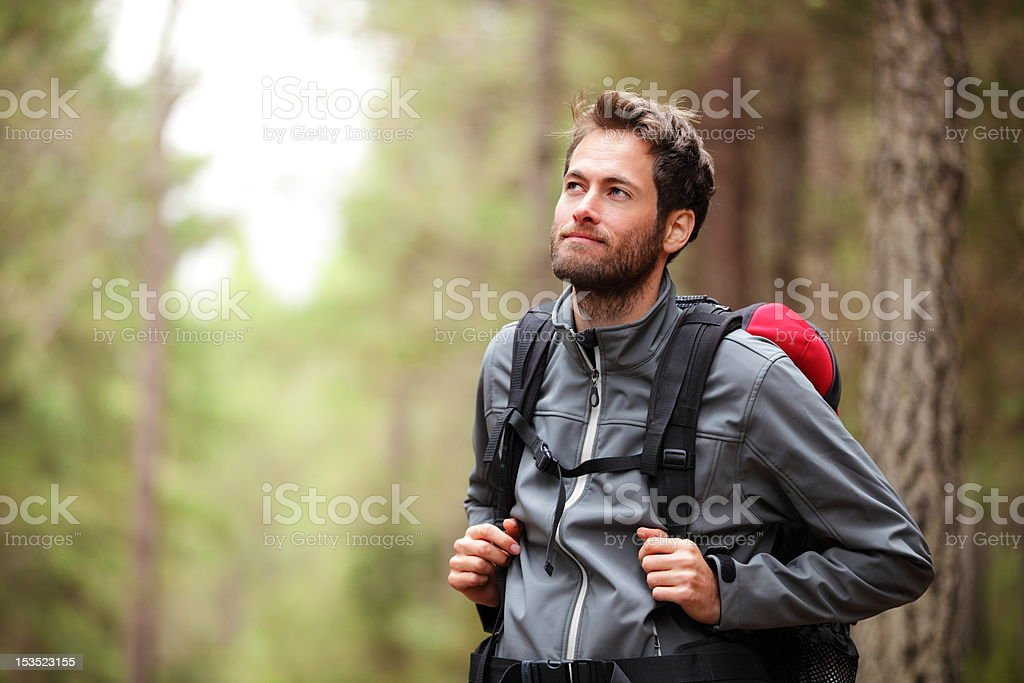 Hiker - man hiking in forest stock photo