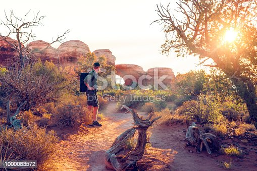 Sun filtering through juniper tree near a Utah arch. A hiker with backpack looks on. Warm colours of the golden hour.