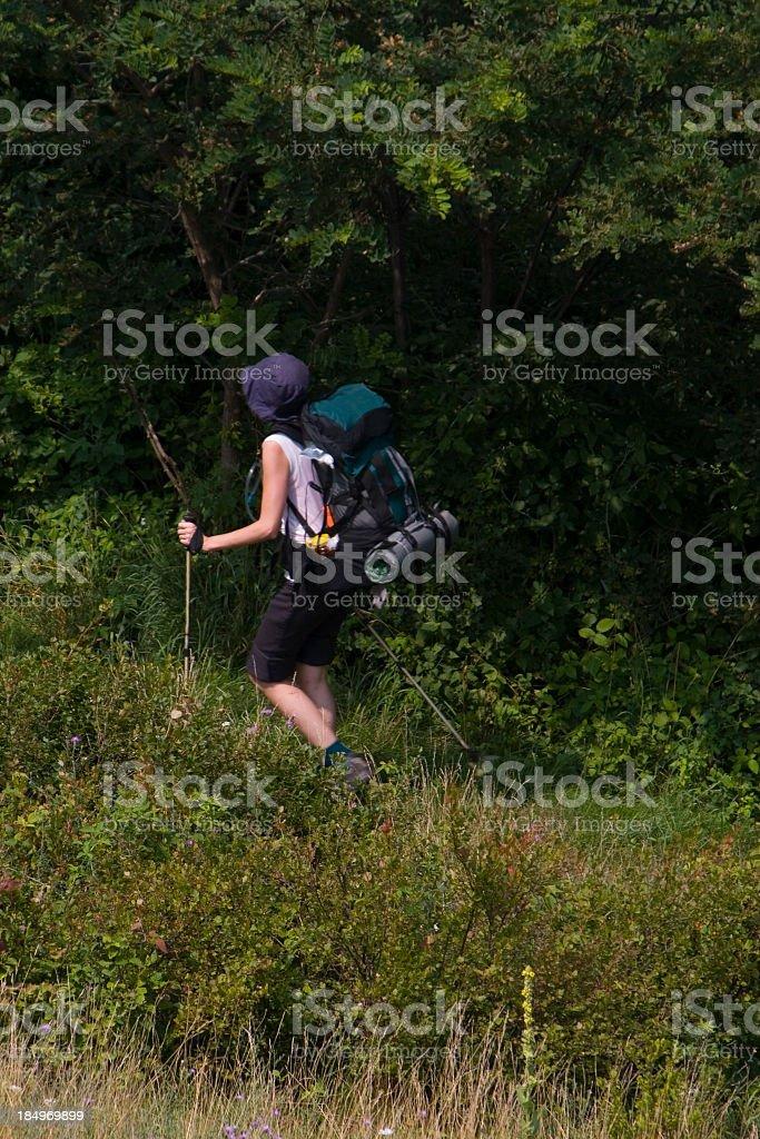 Hiker on Appalachian trail, Shenandoah national park royalty-free stock photo