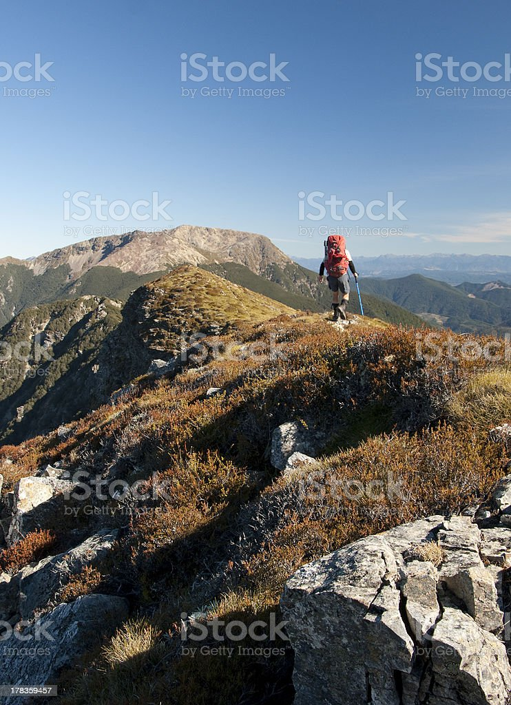 Hiker on ridge to Mount Rintoul, Nelson, New Zealand stock photo