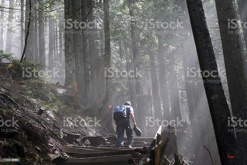 Wanderer auf dem Grouse Grind – Foto