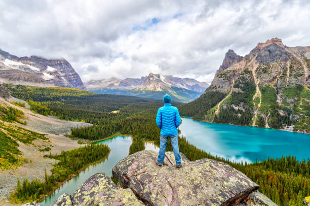 Hiker on Top of Opabin Prospect at Lake O'Hara in Canadian Rockies stock photo