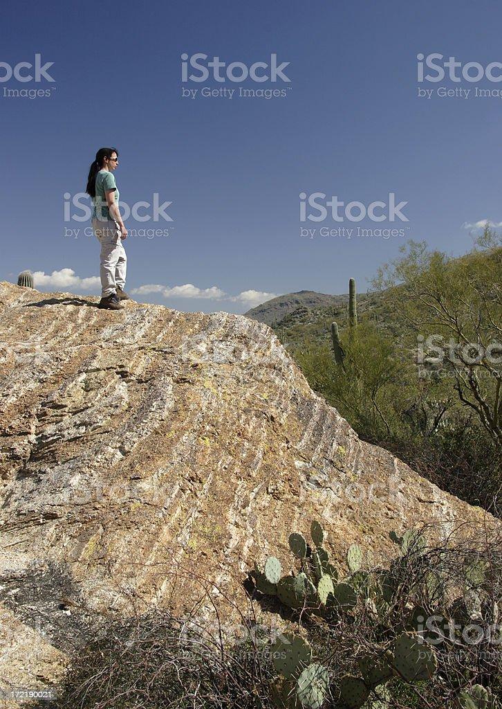 Hiker Overlooking Saguaro National Park royalty-free stock photo