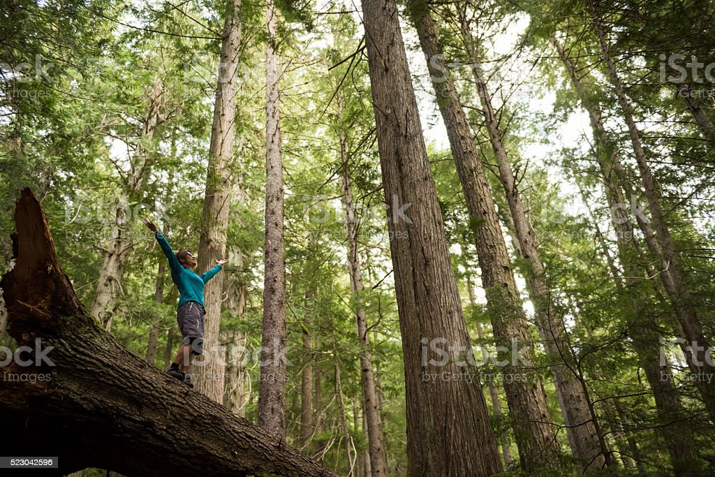 Hiker rejoicing in a temperate rainforest stock photo