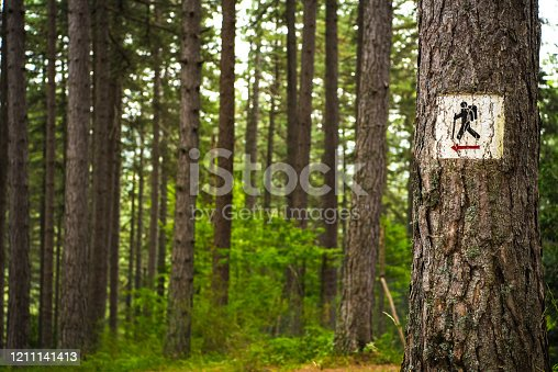 Hiker Trail Sign on the Tree