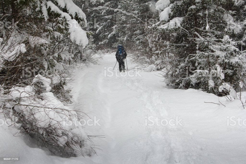 Wanderer zu Fuß entlang des Weges im Winterwald. – Foto
