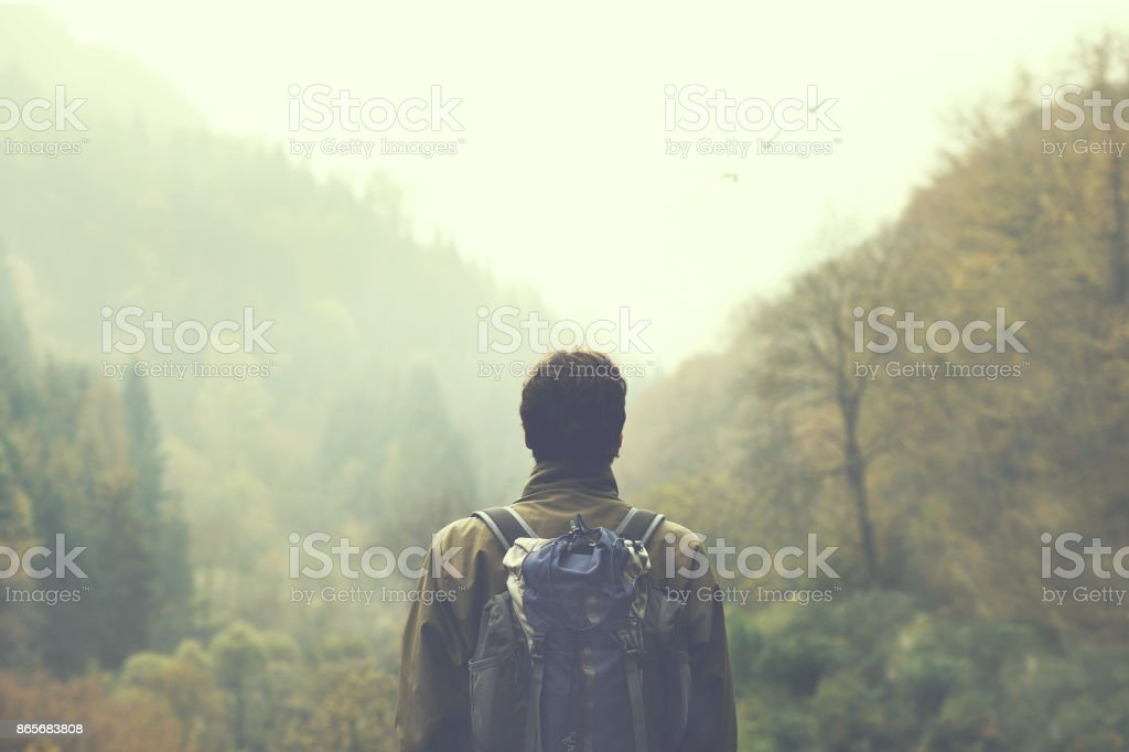hiker walking in a mystic forest stock photo