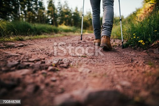 istock Hiker walks on Mountain Trail 700848268