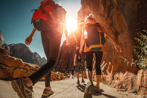 Hiker with backpacks stock photo