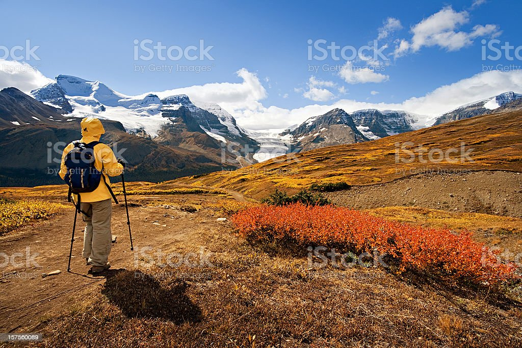 Hiker with hiking poles in the Rockies stock photo