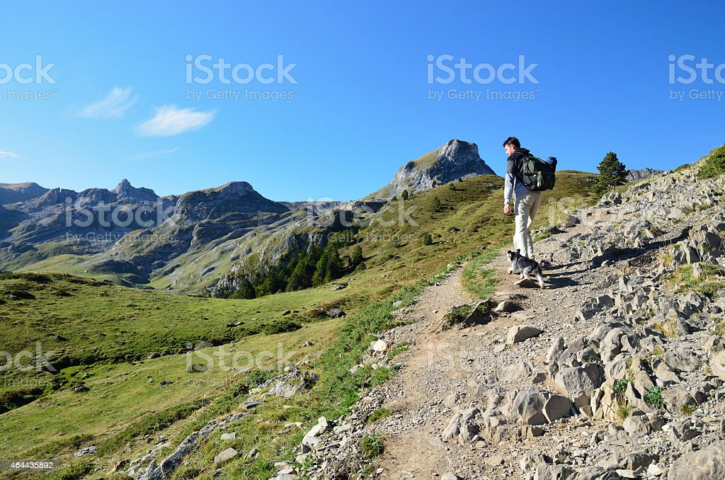 Hiker with his dog on the mountain trail stock photo