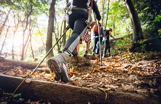 Hiker woman with trekking sticks climbs steep on mountain trail, focus on boot