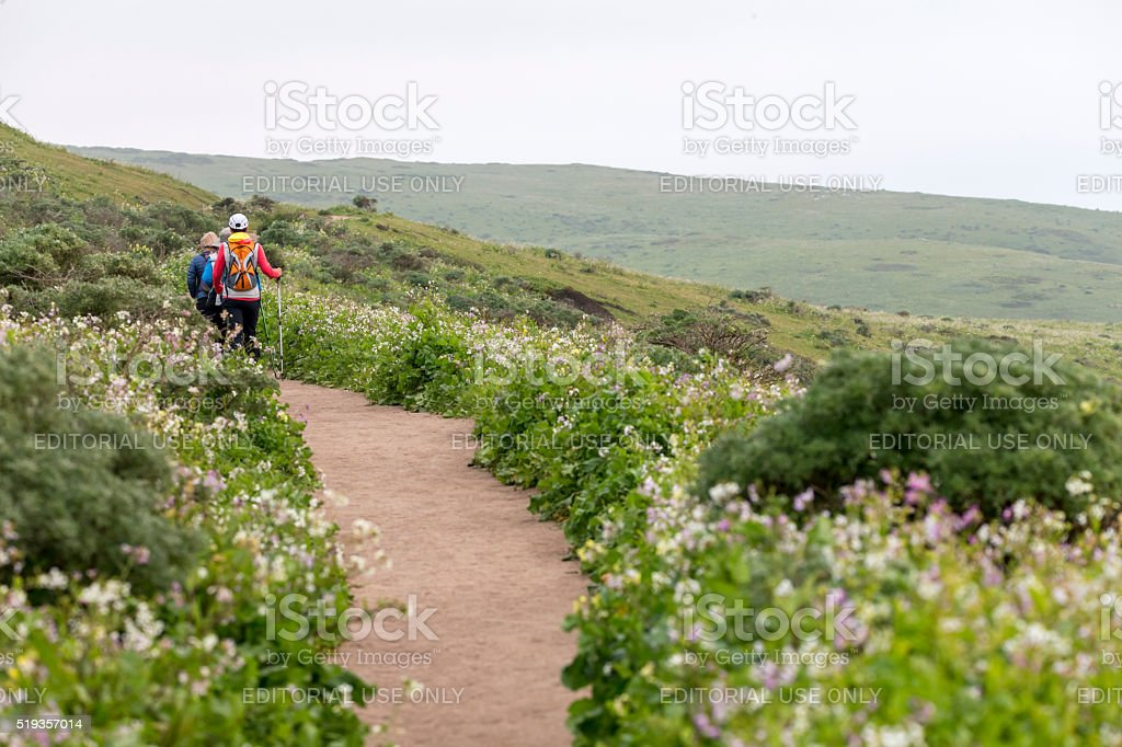 Hikers at Tomales Point of Point Reyes National Seashore stock photo