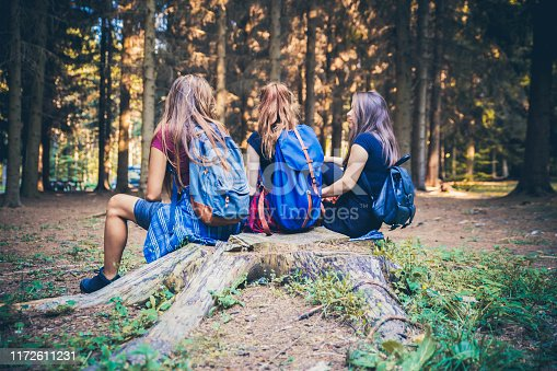 Hikers enjoying in forest