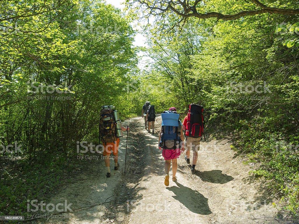 Hikers group walking royalty-free stock photo