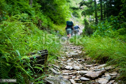 Hikers on a trail in the Smoky Mountains