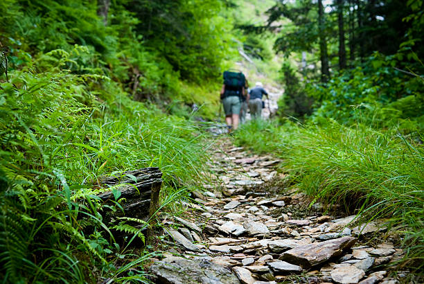 Hikers hiking uphill on trail in the Smoky Mountains Hikers on a trail in the Smoky Mountains appalachian trail stock pictures, royalty-free photos & images