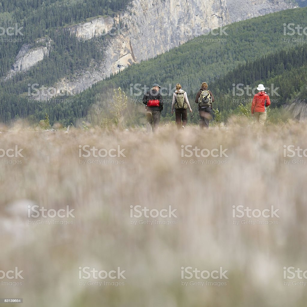 hikers in field royaltyfri bildbanksbilder