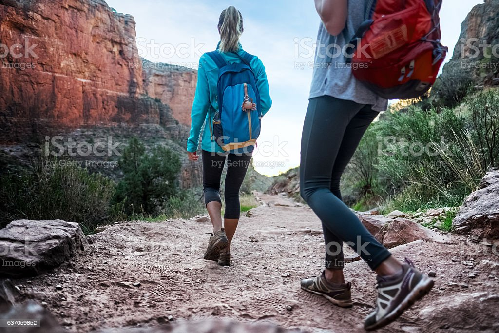 Hikers in the Grand Canyon stock photo