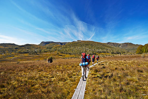hikers on overland trail in tasmania, australia - cradle mountain stock photos and pictures