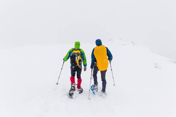 wanderer wandern auf verschneiten plateau - schneeschuhhase stock-fotos und bilder