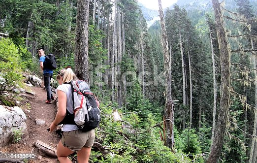 View from behind; deep temperate rainforest environment, near Whistler, BC