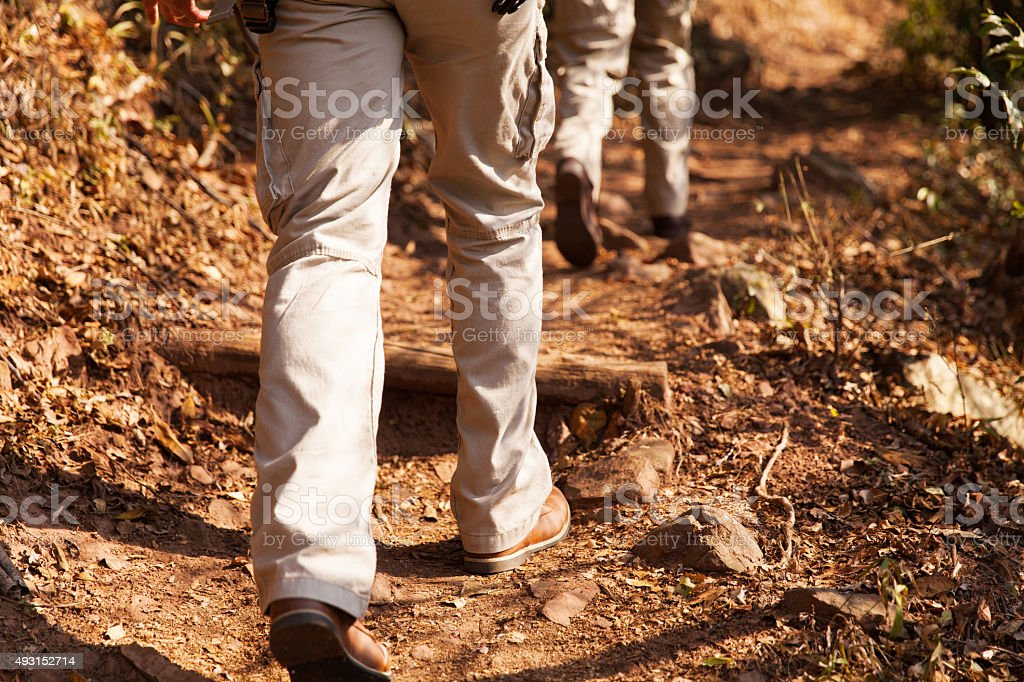 hikers walking in forest stock photo